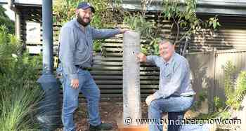 You better bee-lieve it: zoo welcomes 5000 new animals - Bundaberg Now