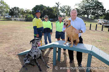 New agility equipment puts pooches through their paces - Bundaberg Now
