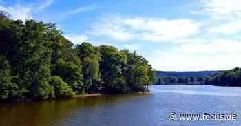 Badeseen in Dresden und Region: Die 5 schönsten Seen - FOCUS Online