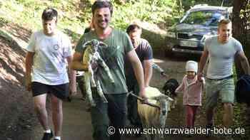 Rangendingen: Rasenmäher auf vier Beinen an der Hochburg - Rangendingen - Schwarzwälder Bote