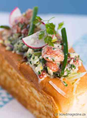 The Comfort Food Guide to Vancouver: East Coast Lobster Roll at Popina - Scout Magazine