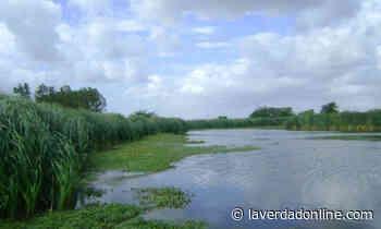 Piden abrir la Laguna de Rocha, en Chacabuco - Diario La Verdad Junín