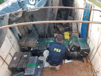 Carreta com placas de Dois Vizinhos é apreendida com duas toneladas de maconha - CGN