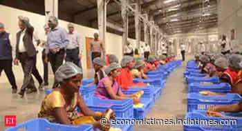 Cabinet clears food processing scheme, fisheries package and free food grains allocation for migrants - Economic Times