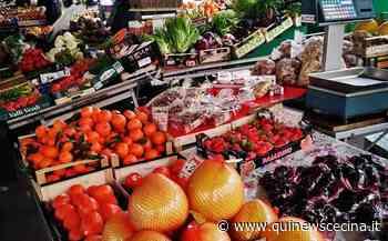 Buoni alimentari per le persone in difficoltà - Qui News Cecina