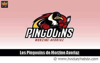Hockey sur glace : D2 : Re-signatures à Morzine/Avoriaz - Transferts 2020/2021 : Morzine-Avoriaz (Les Pingouins)   Hockey Hebdo - hockeyhebdo Toute l'actualité du hockey sur glace