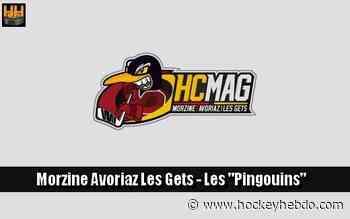 Hockey sur glace : D2 : Morzine conseve ses gardiens - Transferts 2020/2021 : Morzine-Avoriaz (Les Pingouins)   Hockey Hebdo - hockeyhebdo Toute l'actualité du hockey sur glace