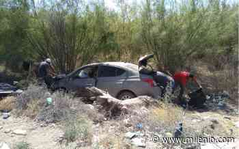 Torreón: Conductora provoca choque en carretera a San Pedro - Milenio