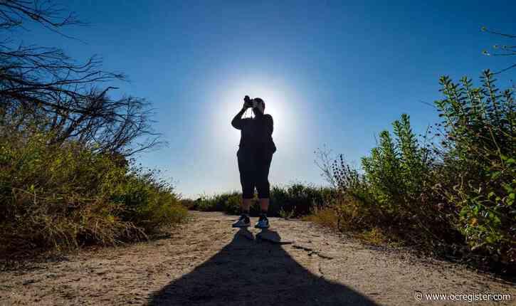 Photographer discovers joyous sanctuary in urban wildlands