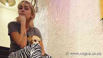 """Miley Cyrus Now Has The Ultimate """"Hybrid"""" Haircut - British Vogue"""