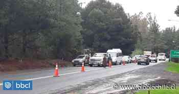 Pucón implementa controles carreteros para evitar el ingreso de turistas durante el 21 de mayo - BioBioChile
