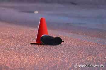 Surrey RCMP investigate fatal pedestrian hit-and-run