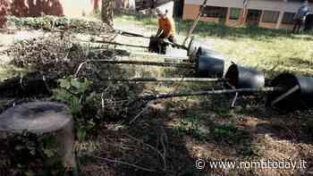 Torre Spaccata: a un anno dall'abbattimento tornano gli alberi nel giardino della scuola