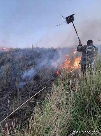 Guarda Ambiental combate incêndio em área de vegetação em Arraial do Cabo, no RJ - G1