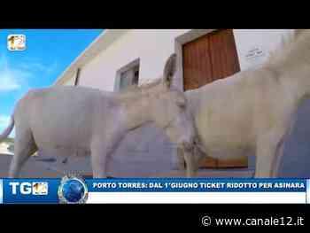 PORTO TORRES: DAL 1°GIUGNO TICKET RIDOTTO PER ASINARA - Canale 12