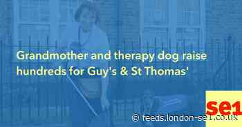 Grandmother and therapy dog raise hundreds for Guy's & St Thomas'