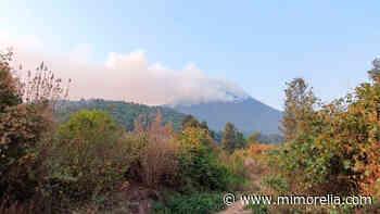 Siniestradas, más de 60 hectáreas por incendios en Uruapan y Zitácuaro - MiMorelia.com