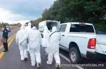 Recolector muere tras caída desde 4 metros de altura, en Uruapan - Primera Plana Noticias