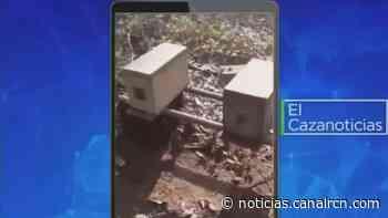 El Cazanoticias: en Puerto López, apicultores denuncian mortandad de abejas por fumigación - Noticias RCN