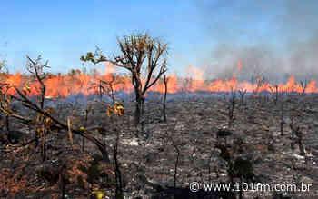 Em plantão policial tranquilo, Jaboticabal não registra ocorrências; Sargento do Corpo de Bombeiros fala das queimadas - Rádio 101FM