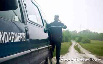Exideuil-sur-Vienne : un cycliste blessé à la tête après avoir heurté un chat - Charente Libre