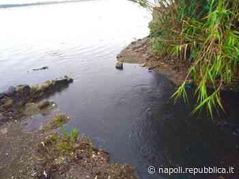 Bacoli, eliminato scarico abusivo di liquami nel Lago Fusaro, non lontnao dalla Casina Vanvitelliana - La Repubblica