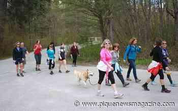 Walk for Alzheimer's moves online - Pique Newsmagazine