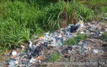 [Galería] Sin cultura de limpieza en la ranchería Río Viejo - El Heraldo de Tabasco