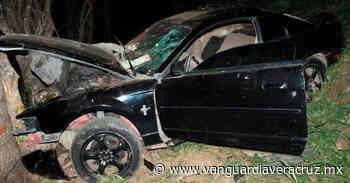 Mustang se estampa contra un árbol en Tantoyuca - Vanguardia de Veracruz
