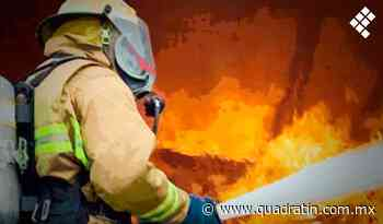 De nueva cuenta arde bodega en el mercado de abastos, Morelia - Quadratín - Quadratín Michoacán