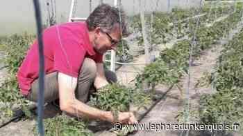 Wormhout : pour survivre au confinement, un commerçant s'adapte - Le Phare dunkerquois