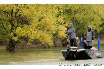 Fishing standing timber