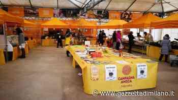Sabato 23 dalle 8 alle 13 a Milano, Rho e San Donato, Coldiretti, Fase 2, ritorna la spesa dal contadino nei mercati agricoli all'aperto del Milanese. - gazzettadimilano.it