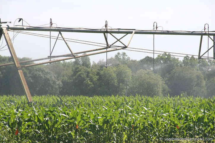 Online tool helps growers assess their water quality, testing readiness