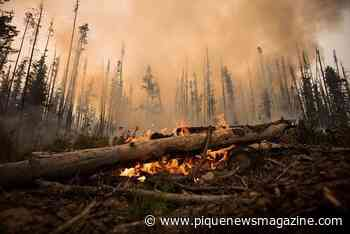 COVID-19 pandemic adds risk to wildfire season: B.C. forests minister