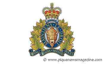 Vancouver man arrested for firing pellet gun in Meadow Park