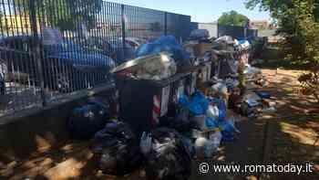 "Settecamini invasa da rifiuti, residenti esasperati: ""Da due settimane nessuna raccolta"""