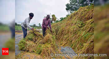 Govt transfers over Rs 19k cr to 9.65 cr farmers under PM-KISAN during lockdown
