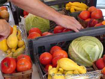 Maynooth Farmers' Market will be open, but different this season - mybancroftnow.com