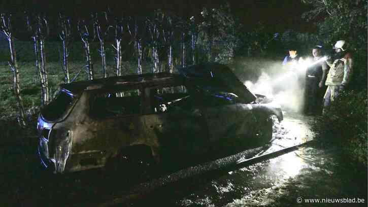 Auto brandt uit op oprit