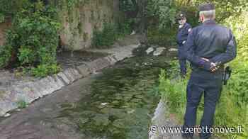 Baronissi, scoperto scarico abusivo nel fiume Irno - Zerottonove.it
