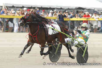 Racing to resume June 5 at Elora raceway - but without fans - Wellington Advertiser