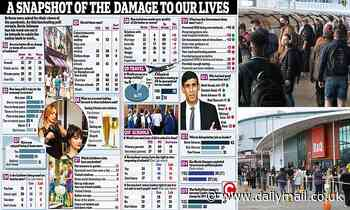 Coronaphobia grips the nation: Britons fear lockdown is being eased too rapidly