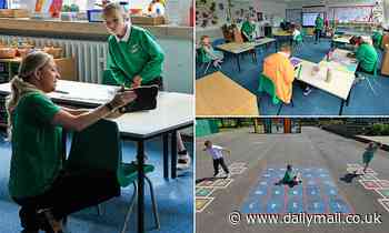 Primary school rises to the challenge with small 'bubble' classrooms