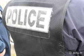 Fontainebleau. Des voleurs interpellés : l'un d'eux simule des malaises au commissariat - actu.fr