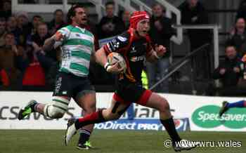 Morgan signs on at Scarlets - Welsh Rugby Union