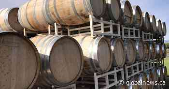 Okanagan wineries allowed to open doors again for taste testing: 'It's very nice'