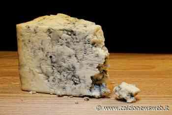 Mangiare gorgonzola scaduto: attenzione a cosa può accadere - Calcionewsweb