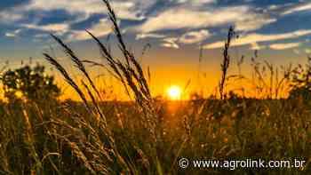 Agroindústrias familiares da região de Soledade recebem Selo Sabor Gaúcho - Agrolink
