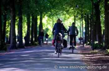 Fahrradunfall in Filderstadt: Betrunkener Fahrradfahrer kracht in Autotür - esslinger-zeitung.de